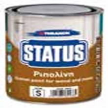 THRAKON STATUS Ριπολίνη Λευκή (Ματ)  375 ml + ΔΩΡΟ ΓΑΝΤΙΑ ΕΡΓΑΣΙΑΣ NITRO (ΕΩΣ 6 ΑΤΟΚΕΣ ή 60 ΔΟΣΕΙΣ)