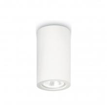 Φωτιστικό Οροφής Μεταλλικό Λευκό 1 X GU10 Y17cm x Ø7cm 155883 K0514+ ΔΩΡΟ ΓΑΝΤΙΑ ΕΡΓΑΣΙΑΣ (ΕΩΣ 6 ΑΤΟΚΕΣ Η 60 ΔΟΣΕΙΣ)