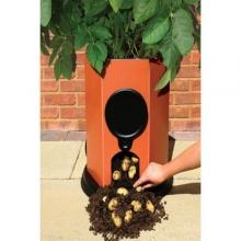 Φυτοδοχείο παραγωγής πατάτας (ΕΩΣ 6 ΑΤΟΚΕΣ ή 60 ΔΟΣΕΙΣ)